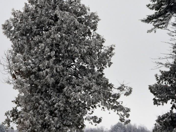 Lac-Balzac-hiver_0032