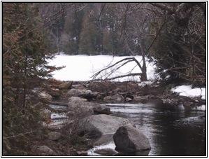 Lac-Balsac-VUE RIVIERE 1